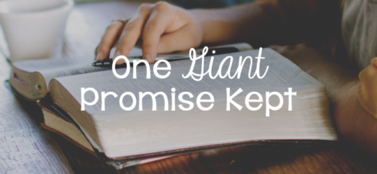 One Giant Promise Kept